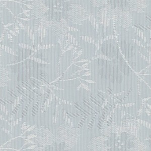 Aster Ice Blue