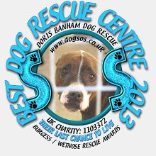 Dog Rescue Centre